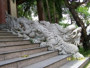 Quang cảnh Thiền Viện